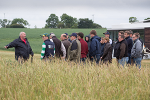 trials show the way on blackgrass control